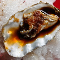 Fresh Oysters with 'Iced' Oatmeal Stout Mignonette Sauce