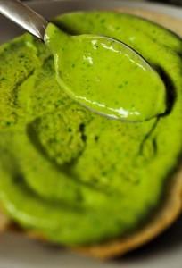 Avocado Cilantro IPA Aioli-2-96