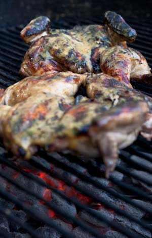 Grilled Pale Ale Beer-Brined Cornish Game Hens