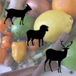 Jamaican Jerk Marinade for Goat | Lamb | Venison