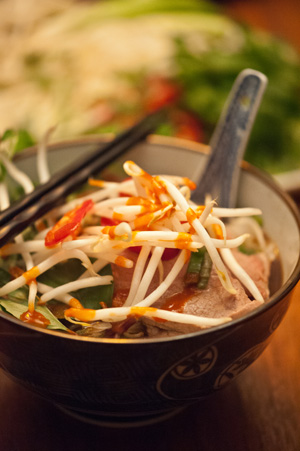 Vietnamese Pho Closeup