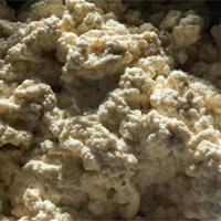 black-truffle-ricotta-cheese-sean-z-paxton