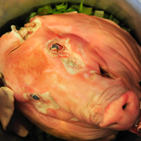 Tasso Beer-Brined Pig Head