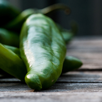 Hatch Chile Recipes 2